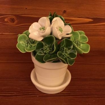 Vaso con sottovaso Fiori verde chiaro / scuro bianchi