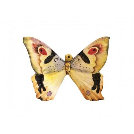 Farfalle e Pappagalli